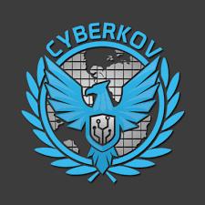 شركة لحماية البيانات